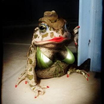 Trey Turner – The Toad's Mistress
